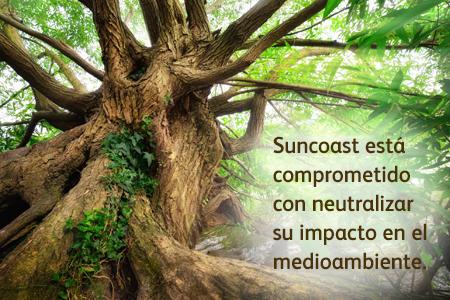 Suncoast Credit Union está comprometido con neutralizar su impacto en el medioambiente.